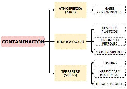 Cuadro sinóptico de la contaminación